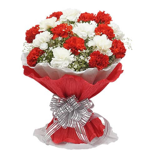 bouquet of 20 red & White Carnations